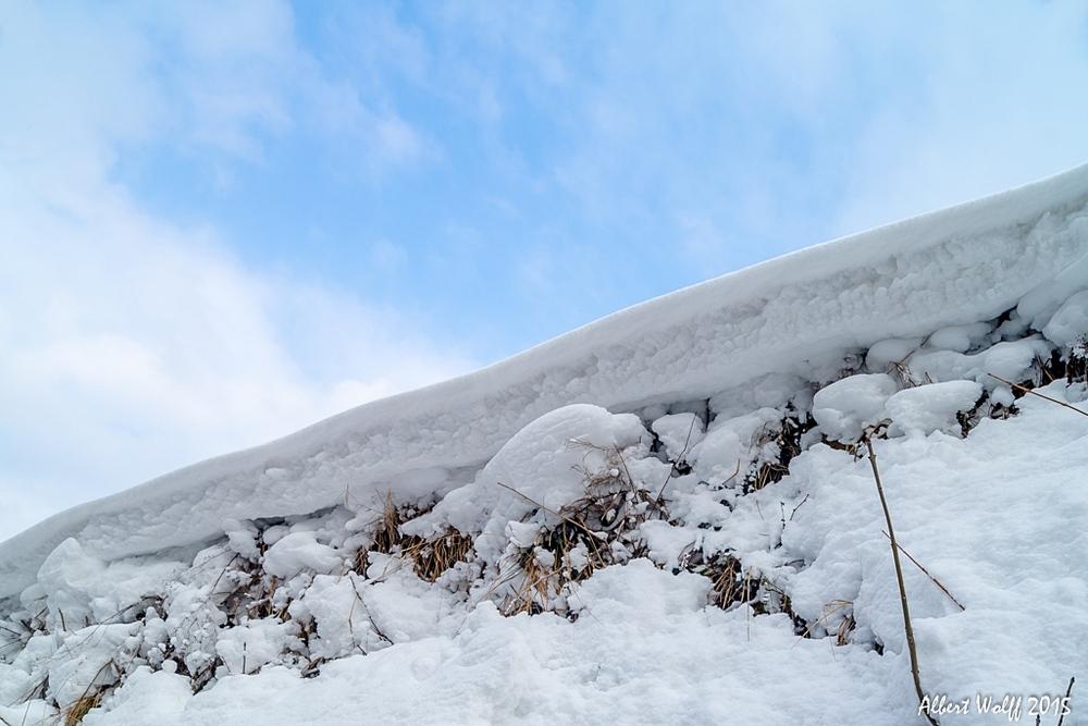 De la neige sur la route et les vignes.