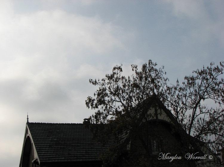 Ciel d'Alsace 294