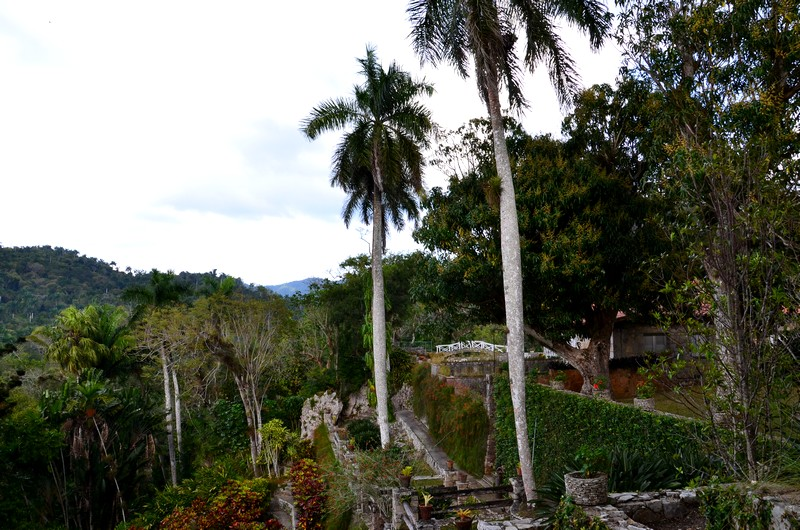 jardins des orchidées soroa cuba schnoebelen