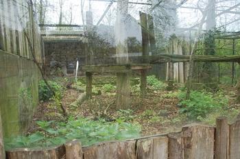 Zoo Osnabruck d50 2012 200