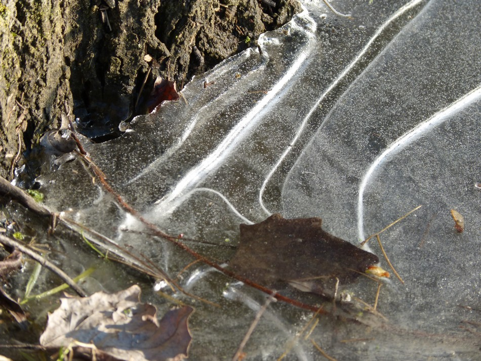 La glace envahit Amiens !