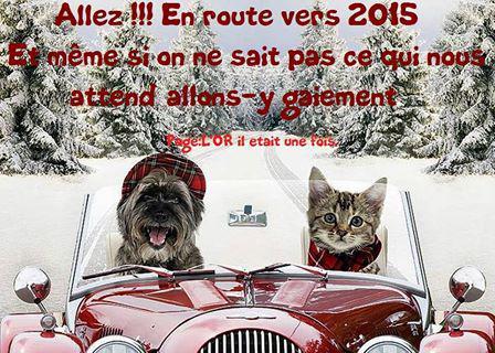 ► Bonne année 2015 !