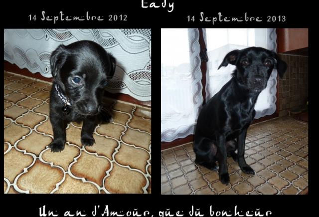 1 an de ma Lady d'amour