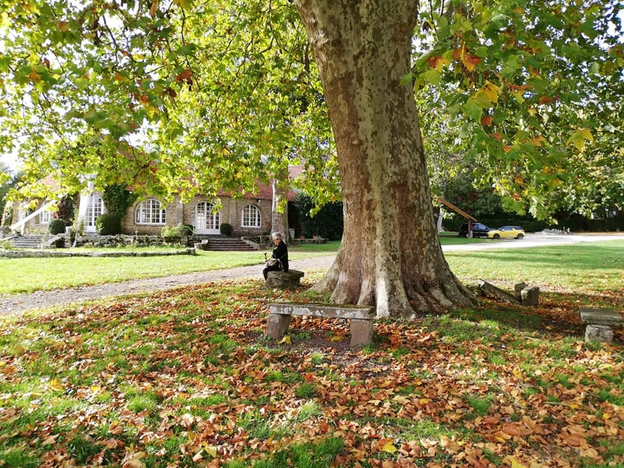 SUITE - balade dans le parc du Chateau du Vivier