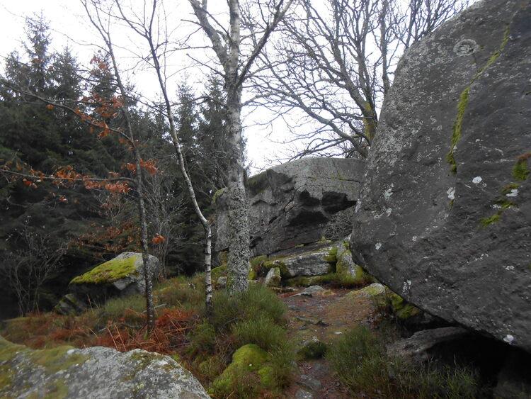 Vosges-les roches de la moulure