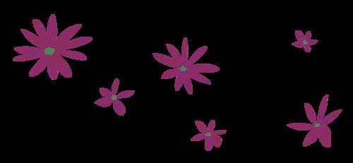 Fleurs en Farandole Série 29