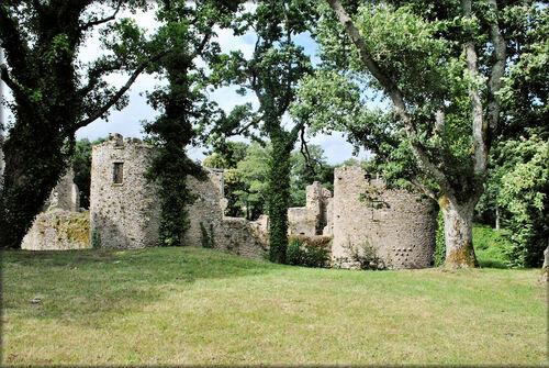 Photo des ruines du château médiéval de Ranrouët