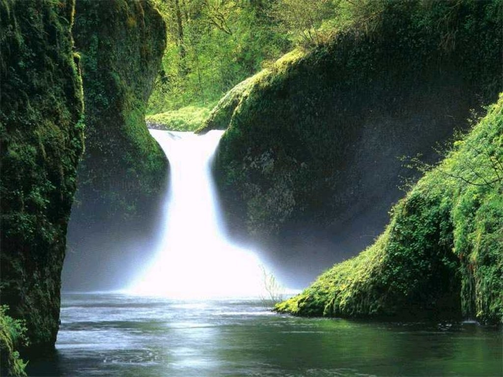 beautiful_garden_waterfalls_screensaver_27842.jpeg