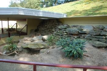 dierenpark emmen d50 042