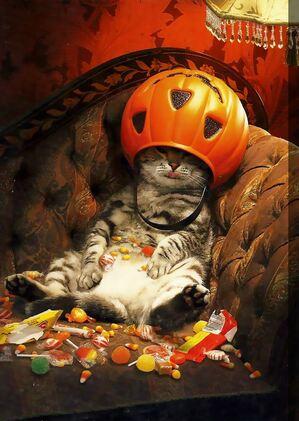 """Résultat de recherche d'images pour """"halloween humoristique"""""""