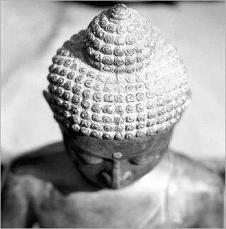 bouddha-5-.jpg
