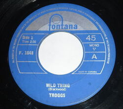Troggs : Wild Thing (1966)