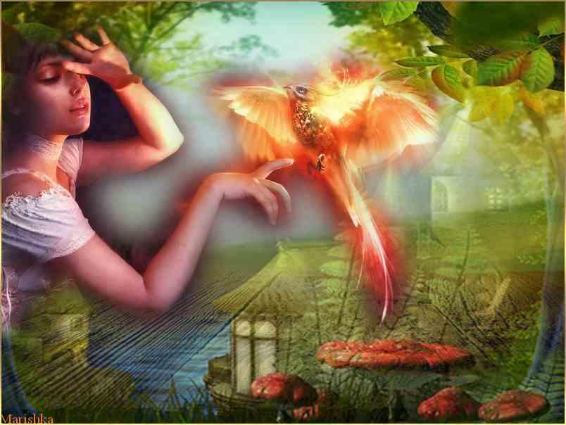 La Demoiselle et L'oiseau