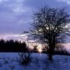Paysage d\'hiver