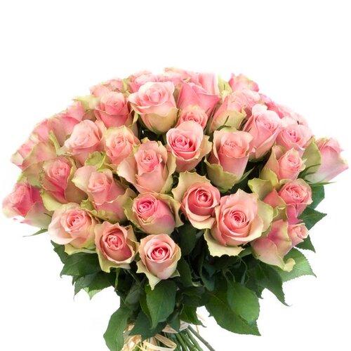 Les roses aux noms célèbres