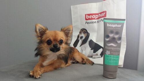 Beaphar une gamme de shampoing prenium et naturel