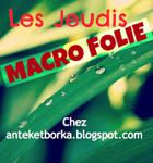 logo_macro-folie