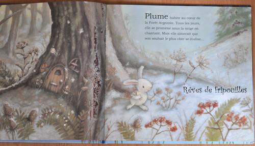 Le merveilleux Noël de Plume de Rebecca Harry, éd. Gründ