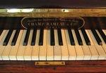 Champ Rameau
