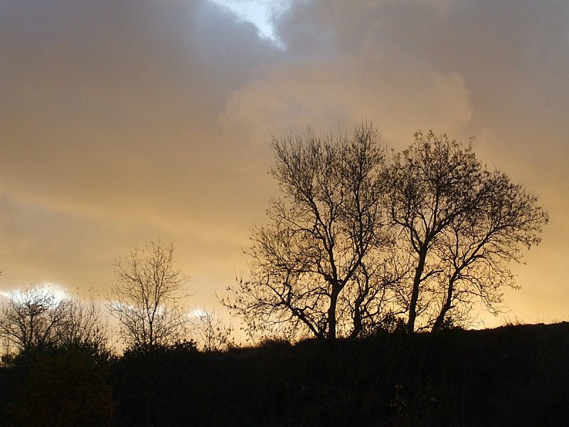 coucher-soleil-hivernal.jpg