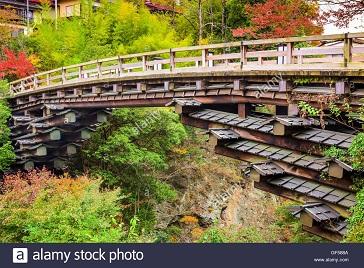 Le pont des singes au Japon ...