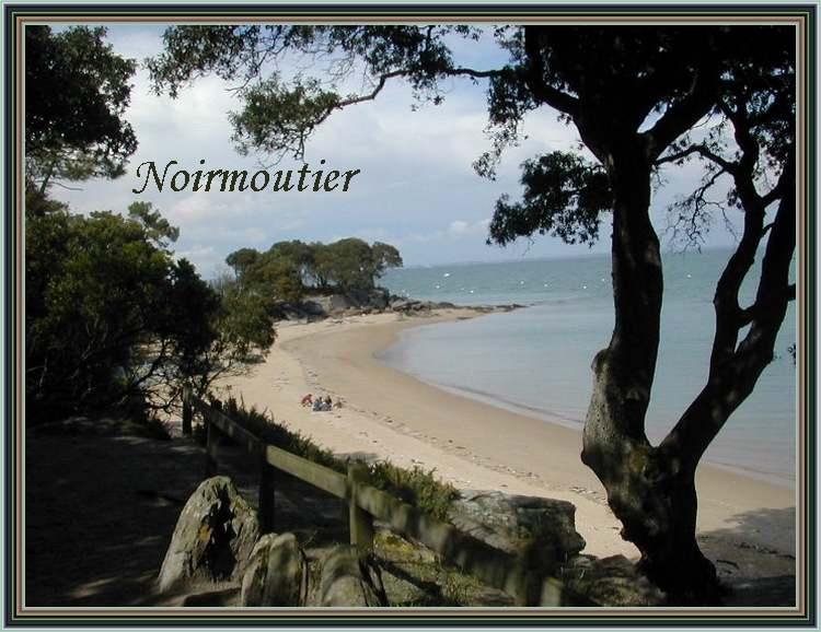 """"""" l'Ile aux mimosas """" : Noirmoutier"""