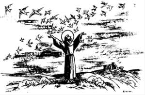 Francois oiseau