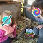 Morgane et Arthur ont trouvé des œufs en chocolat dans la paille.