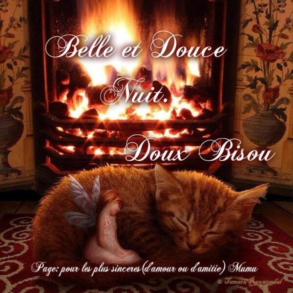 Belle-et-douce-nuit---superbe-1545151_647689938624019_43908.jpg