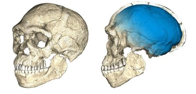 JEBEL IRHOUD (-300 000 ans d'HOMO SAPIENS)
