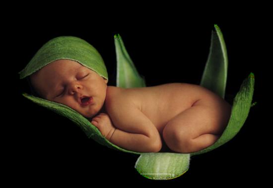 Bébés Série 14