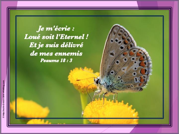 Et je suis délivré de mes ennemis - Psaumes 18 : 3