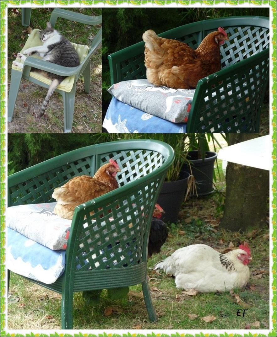 La sieste au jardin