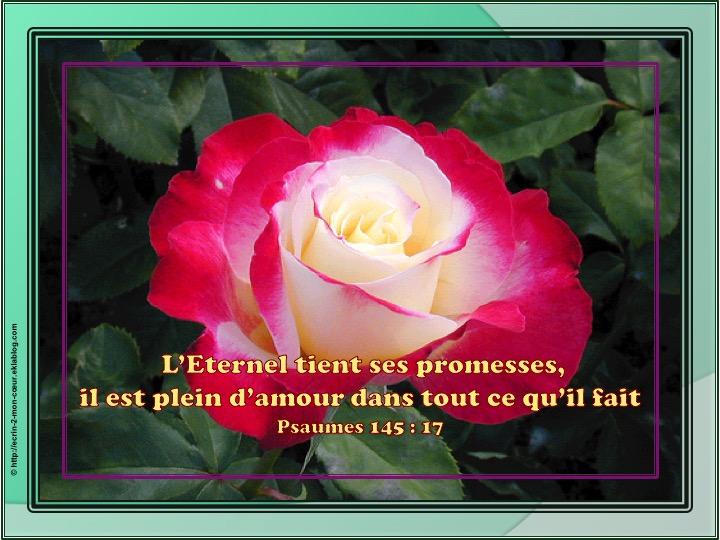 L'Eternel tient ses promesses - Psaumes 145 : 17