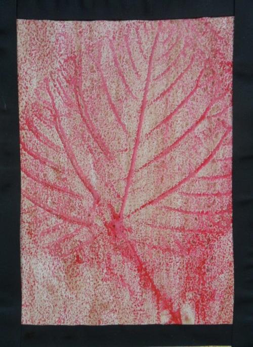 Mise en valeur des empreintes de feuilles