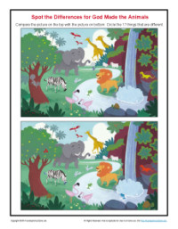 Find the Differences Puzzle - God Made the Animals
