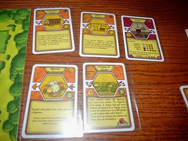 41 - Agricola 4 (cartes)
