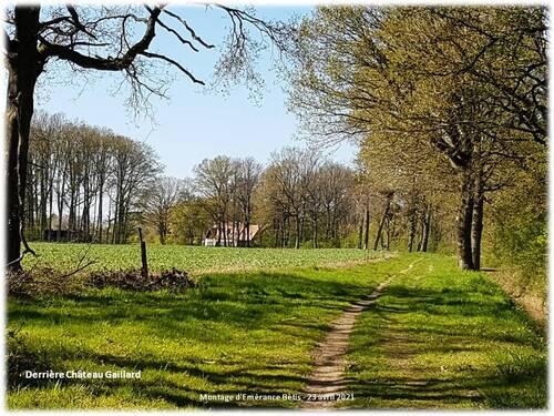 Montfort l'Amaury : boucle de 7km autour du camp Henri IV