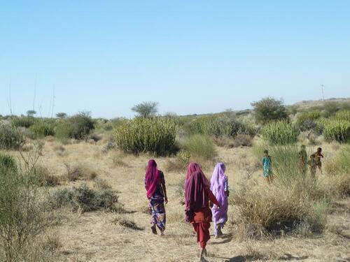 Rajasthan, derniere etape : Jaisalmer