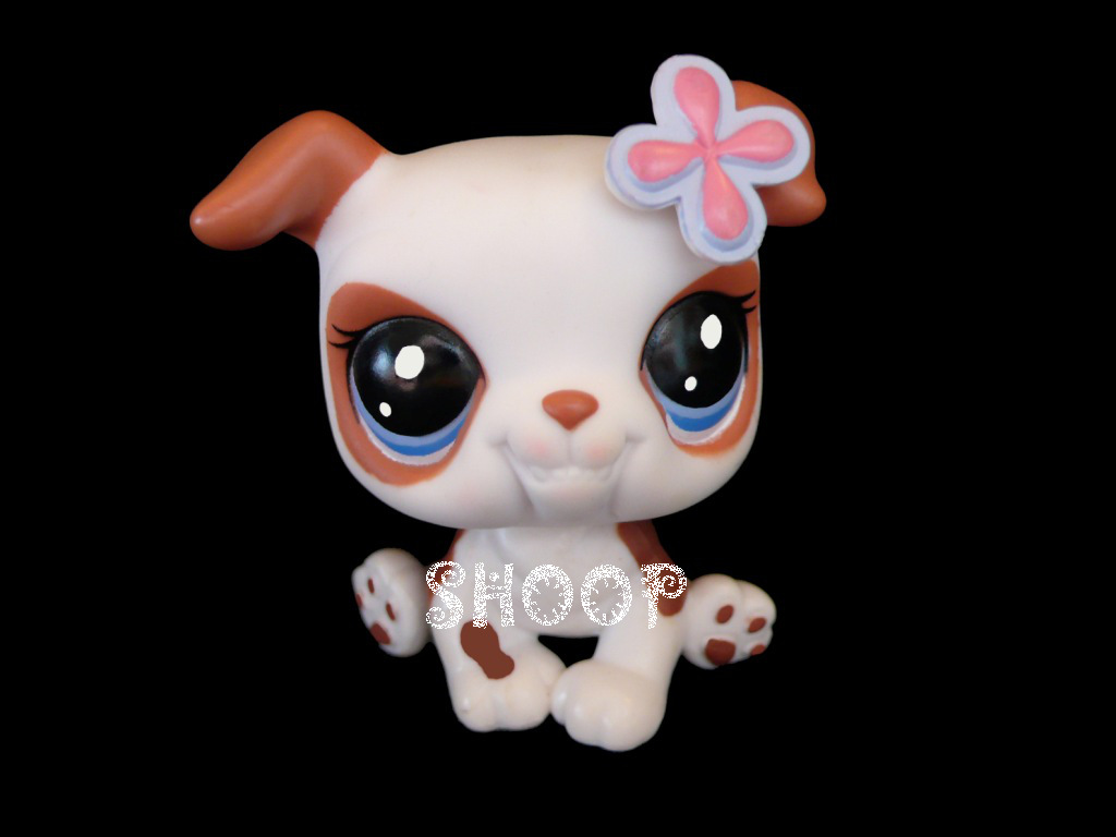 LPS 2106