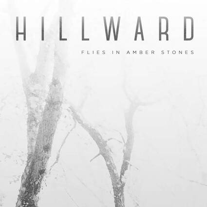 Hillward - Flies in Amber Stones (2015)