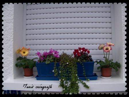 Bord de fenêtre