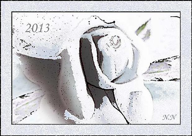 rose-des-neiges-voeuxbis.jpg