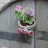 Fleurs 12.jpg
