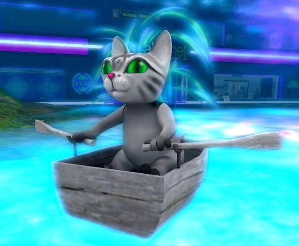 Chat en barque