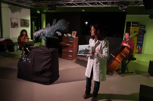 la création au Muséum de Toulouse