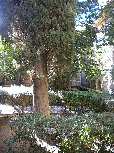 Îslas Baleares Mallorca 080