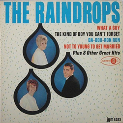 The Raindrops (6)