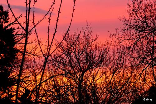 Vieille-Toulouse: soleil du soir ...