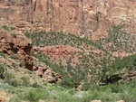 Las Vegas à Bryce Canyon (29 juillet)